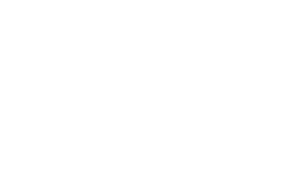 First Impression Doors and More logo in white