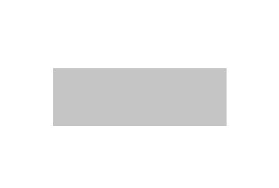 logo of WinDoor in grey
